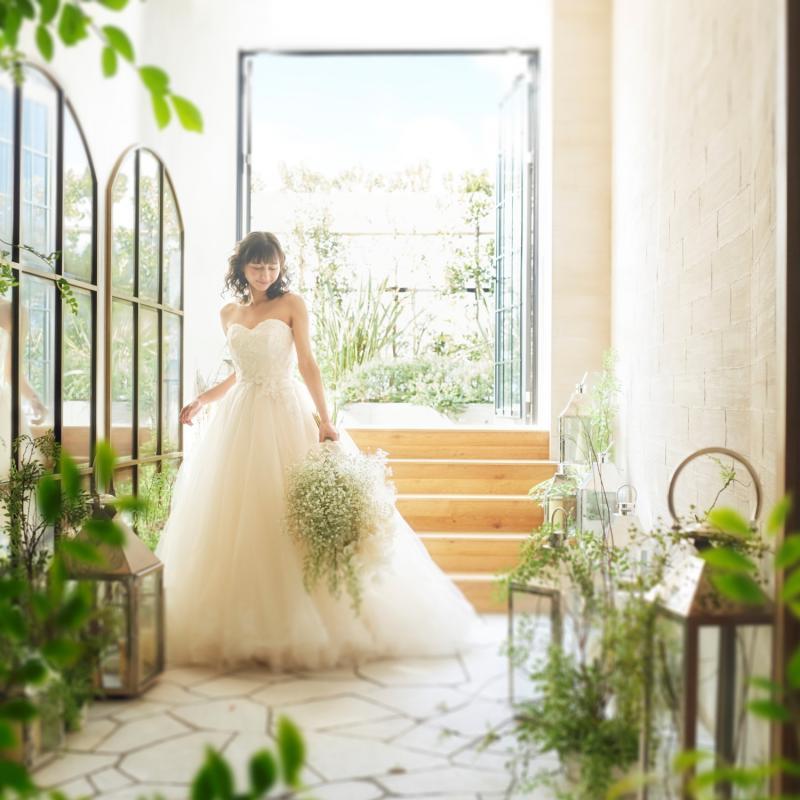 【2019年夏婚を検討の方へ】光と緑のチャペル×美食ハーフコース