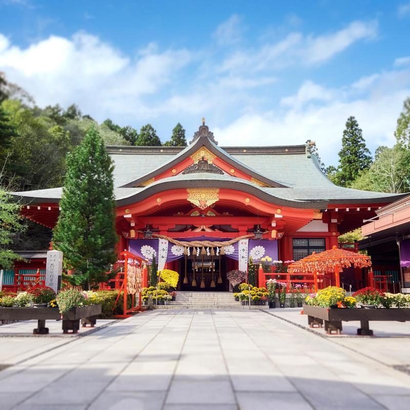 【和装前撮り特典付き】神前式&神社で前撮りが叶う!和婚フェア