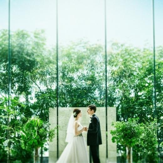 【期間限定】光×緑溢れるチャペル入場体験&豪華特典付きフェア